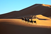 MOROCCO 2014 : From Mediterranean Sea to Sahara Dessert